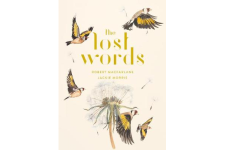 Wild Words in the World: Using the Lost Words resource boxes