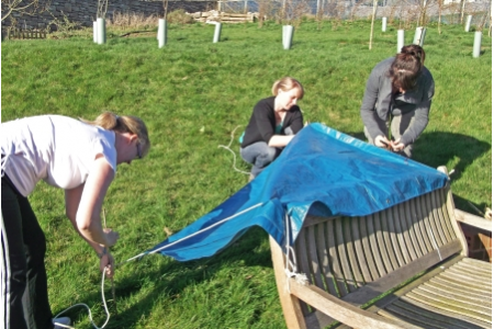 Forest Schools Revisited