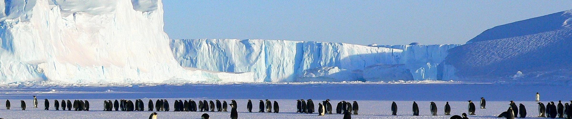 Celebrating Antarctica with the SDGs: Antarctica Day 1 December